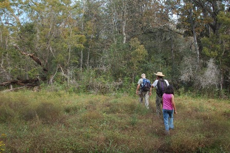hiking into the Otto tract