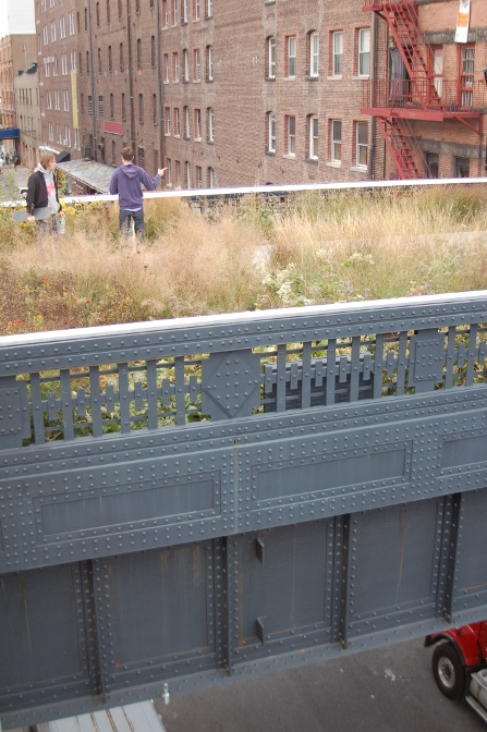 High Line elevated meadow